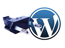WordPress plugin temizligi