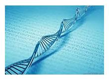 Geleceğin Bilgisayarları DNA Tabanlı Olabilir