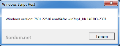 windows 7 sp1 version numarası