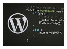 Wordpress te kaçak tema kullanmanın tehlikeleri
