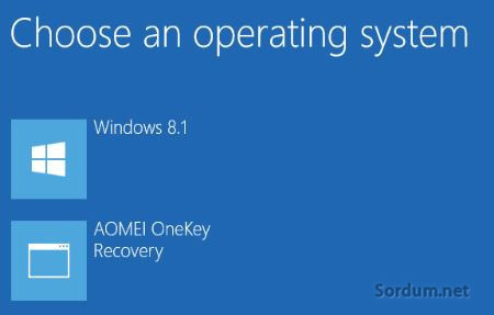 AOMEI OneKey Recovery boot secenegi