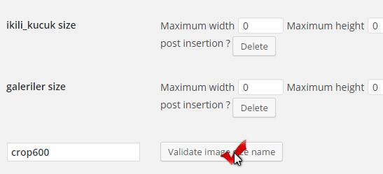 validate_image_name