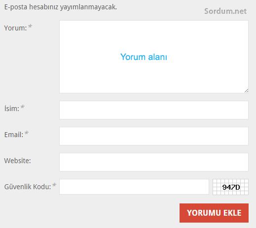 wordpress yorum alanı