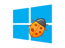 Windows 10 Web kamerası sorunu