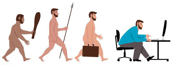 Evrim şeması