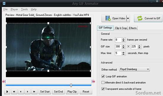 any_gif_animator