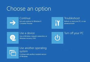 Windows_8_Boot_Options_Menu