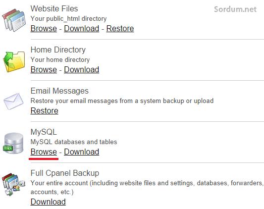 Site backup pro free secenekler