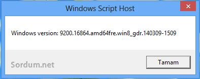 windows 8 version numarası
