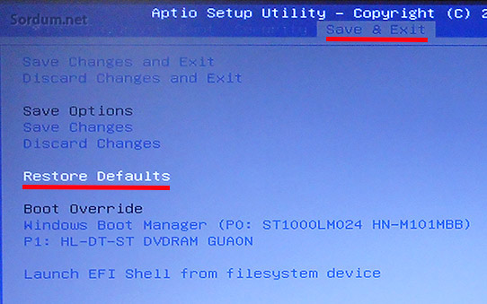 Bios restore defaults