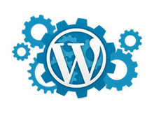 wordpress ozellikleri