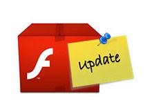 flash player güncelleme seçenkleri
