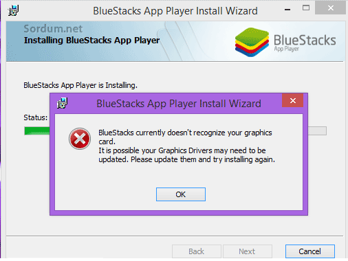 Bluestacks ekran karti hatası