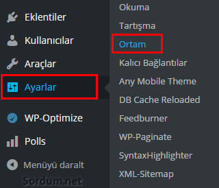 Wordpress ortam