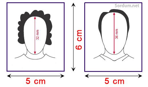 biometrik fotoğraf ölçüleri