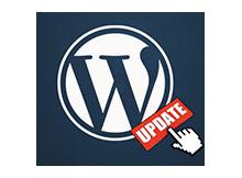 wordpress otomatik guncellenmesin