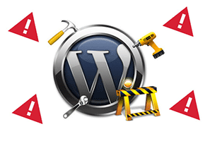 wordpress hatası