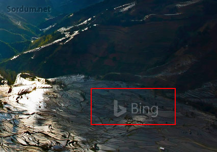 bing filigran