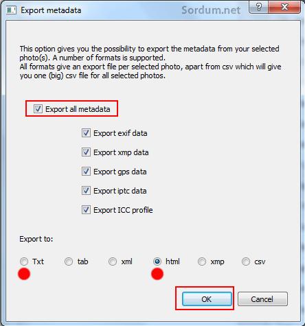 export metadata