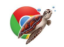 chrome google hizmetlerinde yavaş çalışıyor