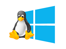 Linux windows dual boot