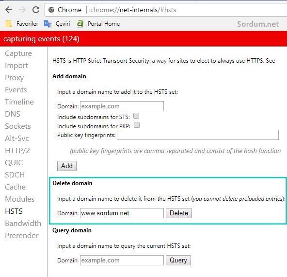 Chrome delete domain