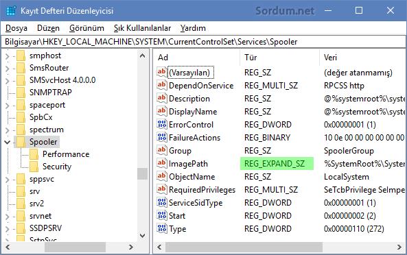 duzeltilmis EXPAND_REG_SZ