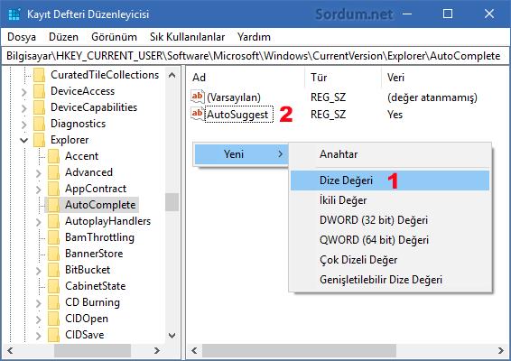 autosuggest registry anahtarı
