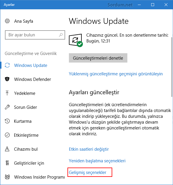 windows update gelişmiş