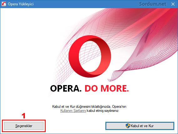 Opera kurulumunda Portable seçeneği