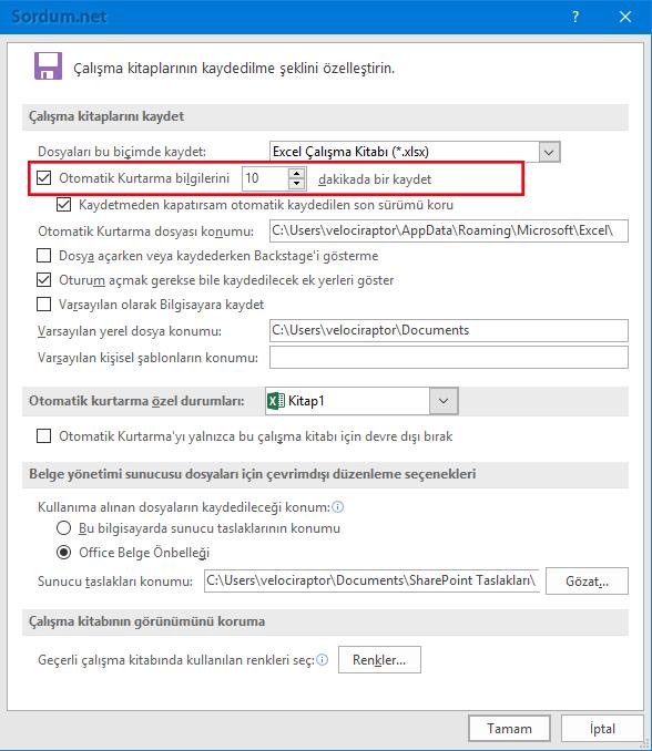 Excel seçenekleri