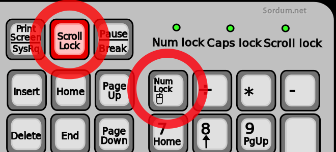 Numlock Scroll lock tuşları