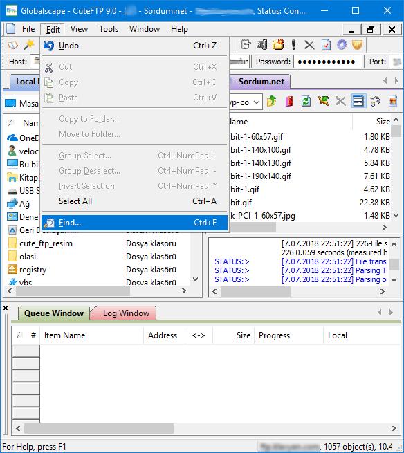Cute FTP arama