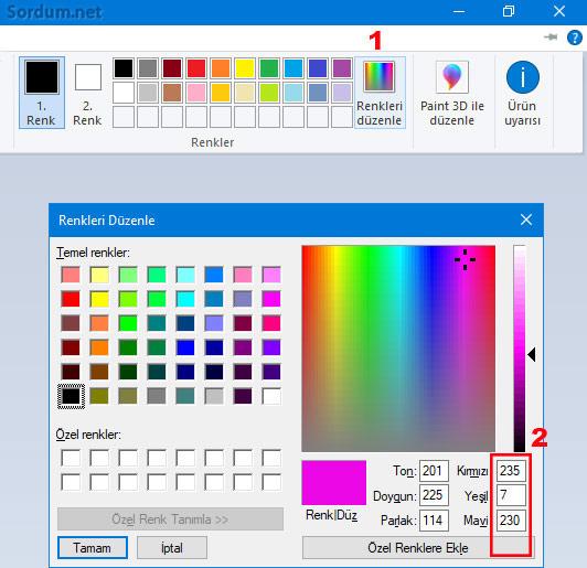 Seçim alanı rengini belirlemek