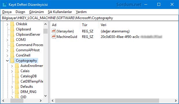 MachineGuid anahtarı