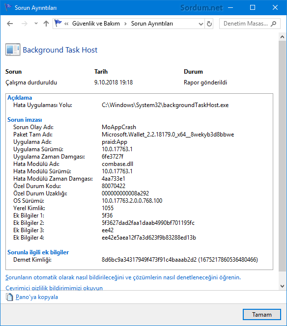 Sorun raporu ayrıntıları
