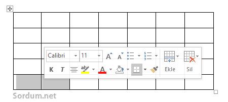 klavyedeki Artı eksi tuşları ile word tablosu