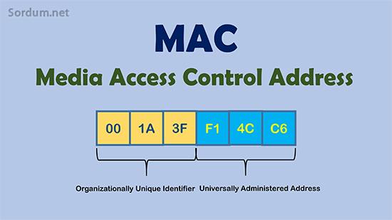 MAC adresi Bölümleri