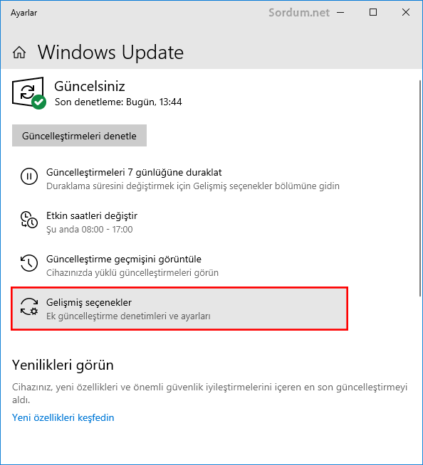 Windows update gelişmiş seçenekler