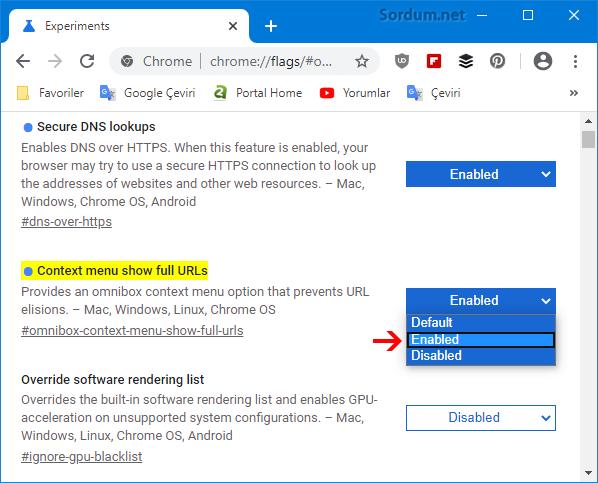 Chrome adres satırı https:// ve www leri göstersin