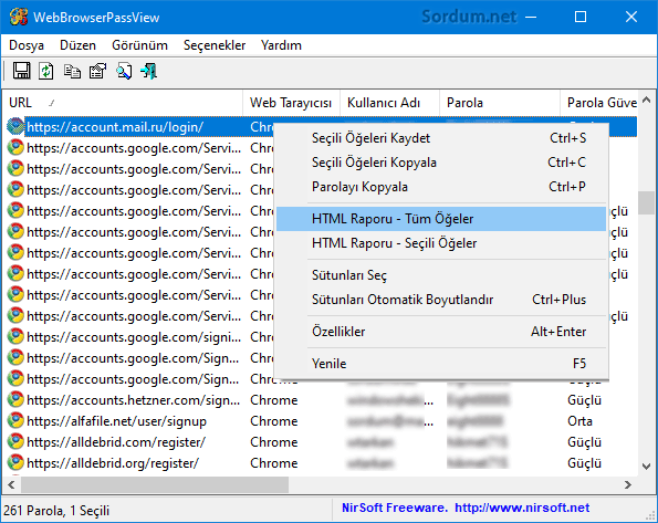webbrowserpassview html raporu