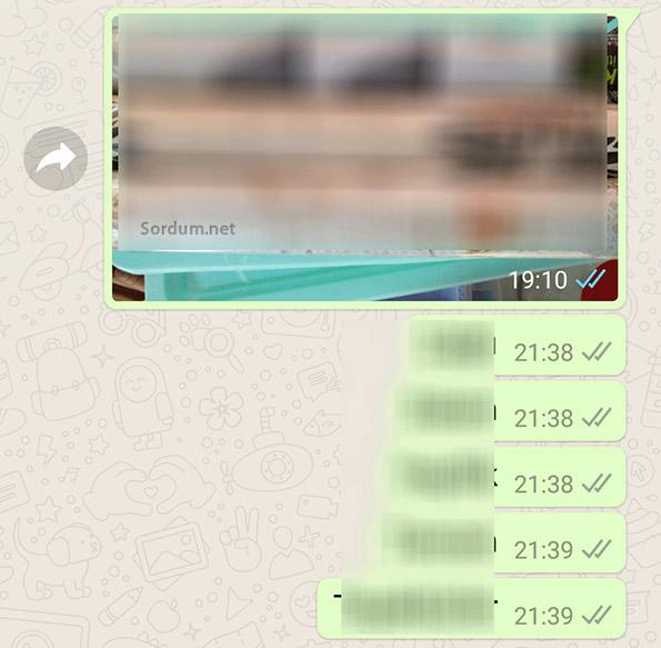 WhatsApp iki gri tik