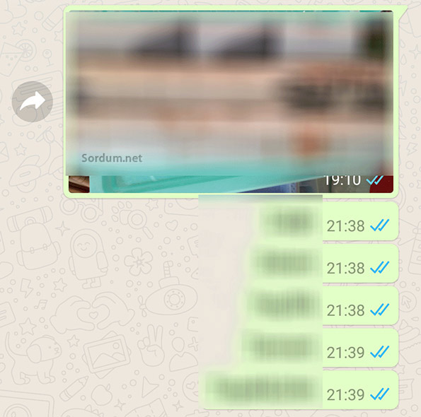 whatsapp iki mavi tik