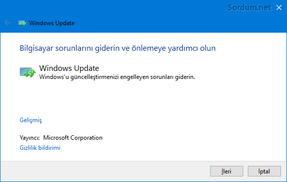 windows update sorun giderici