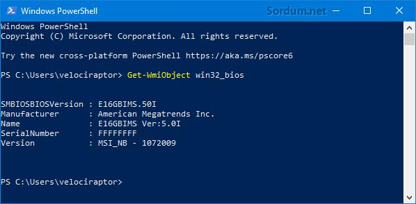 Powershell komutu ile BIOS sürümünü bul