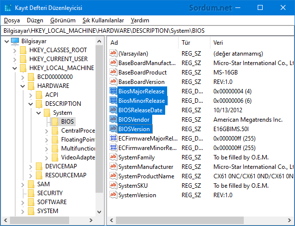 Registryden BIOS sürümünü öğren