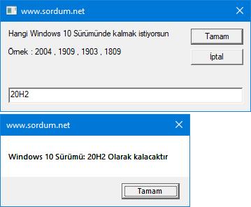 Windows 10 Sürümü güncellemesin