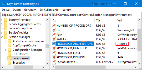 Registryde işlemci mimarisi