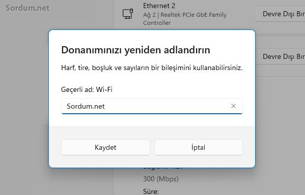 Windows 11 donanımı yeniden adlandır